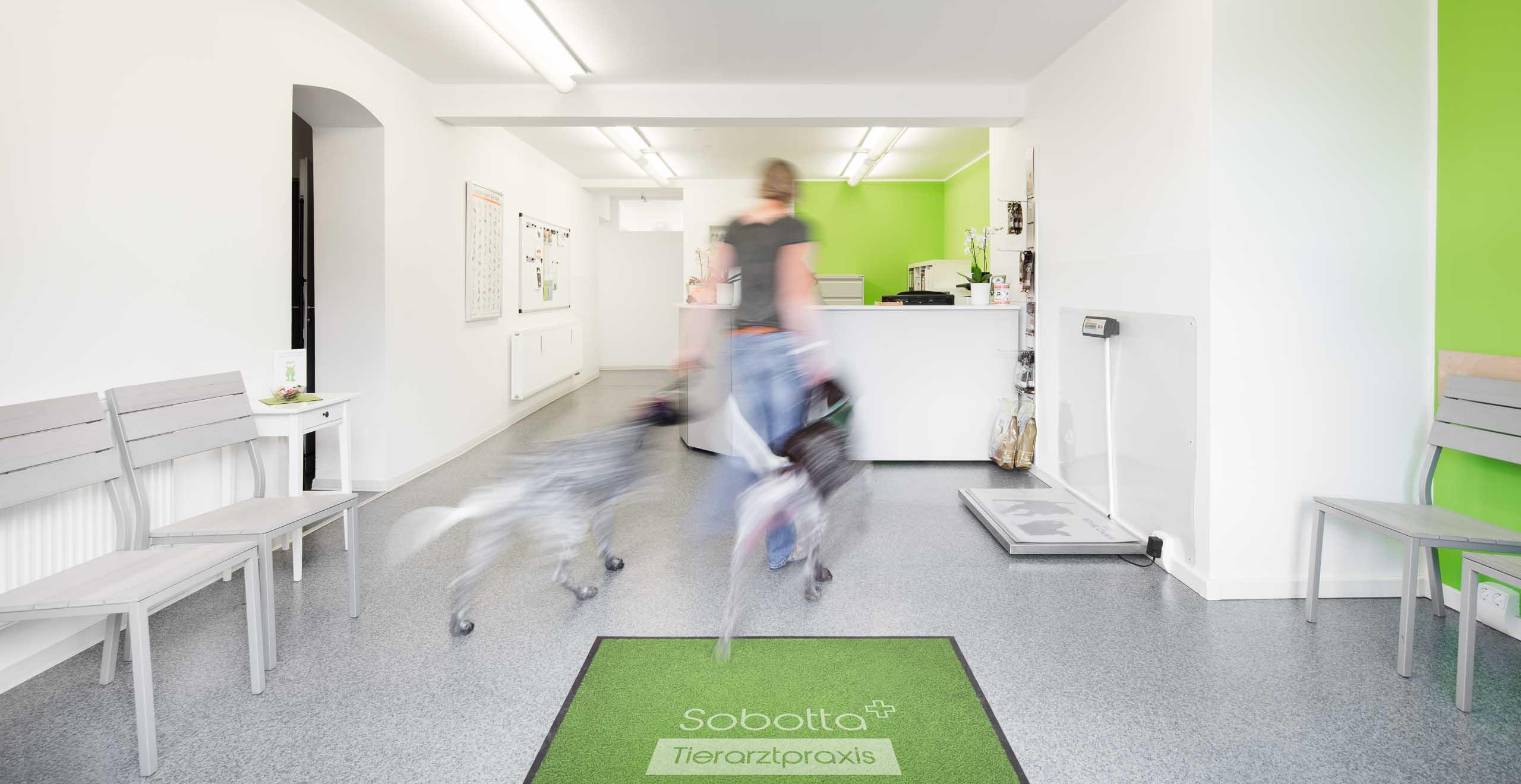 Tierarztpraxis Sobotta, Lindenstraße 12, 21435 Stelle-Ashausen